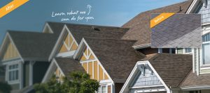 House cleaning service includes roof, siding and gutters