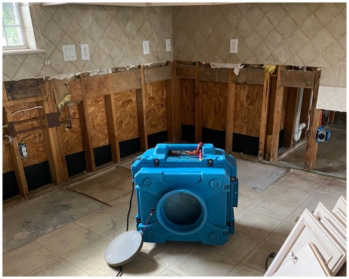 Water and Mold Remediation